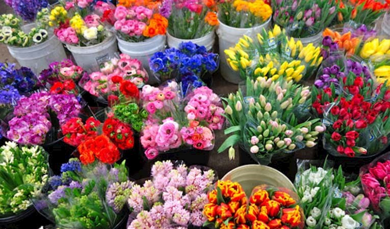 Türkiye'den 50 ülkeye Sevgililer Günü çiçeği