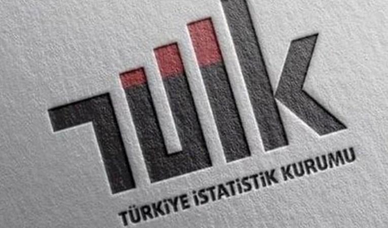 TÜİK'ten yeni istatistik