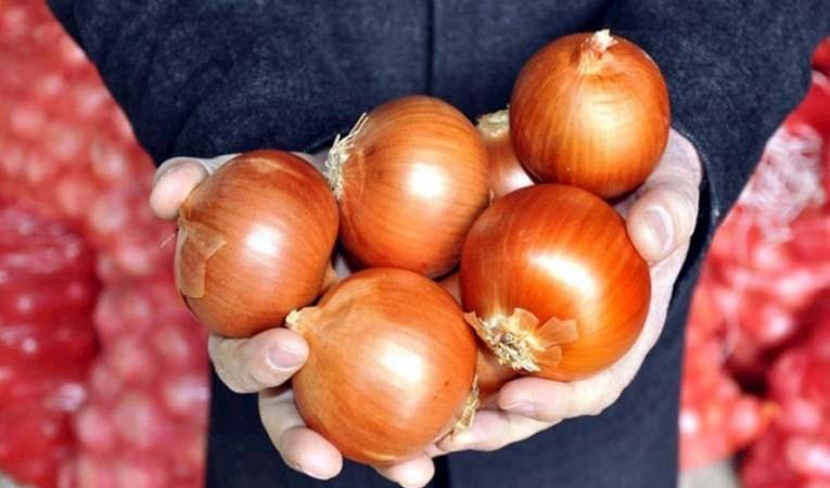 Soğanda gümrük vergisi sıfırlandı