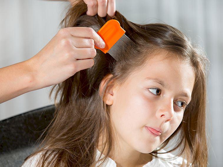 Bit Nasıl Temizlenir Saç Güzellik Haberleri