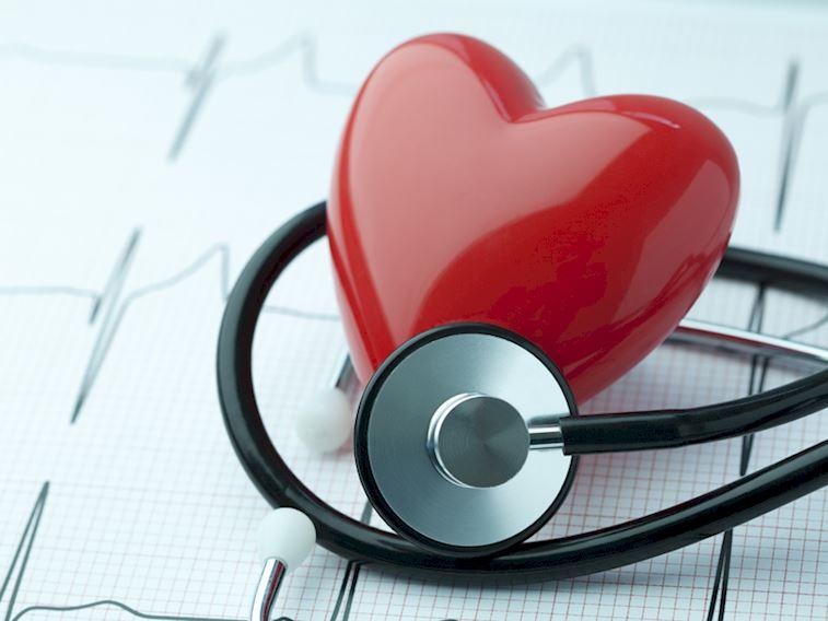 kalp saglıgı ile ilgili görsel sonucu